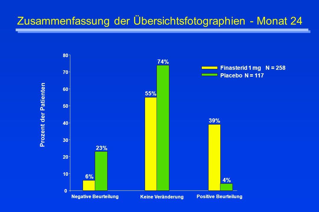 Zusammenfassung der Übersichtsfotographien - Monat 24