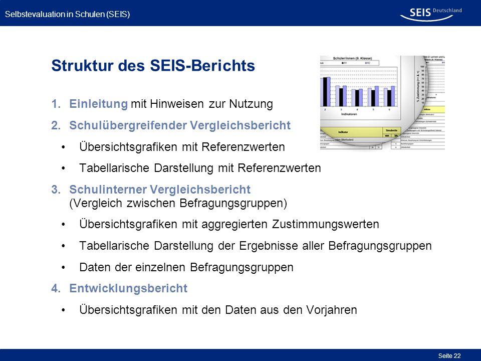 Struktur des SEIS-Berichts