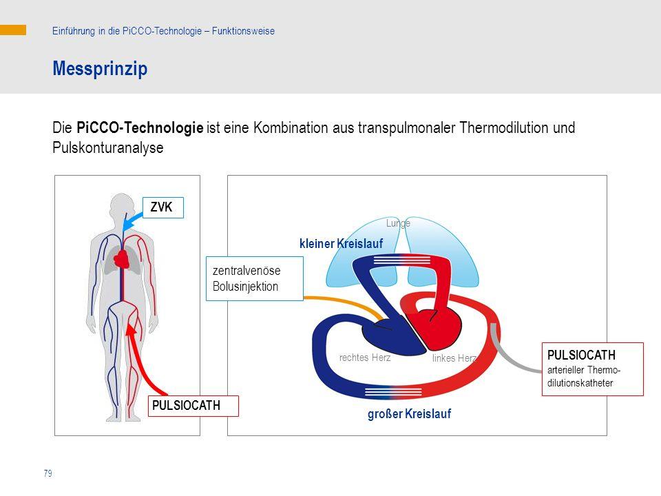 Einführung in die PiCCO-Technologie – Funktionsweise