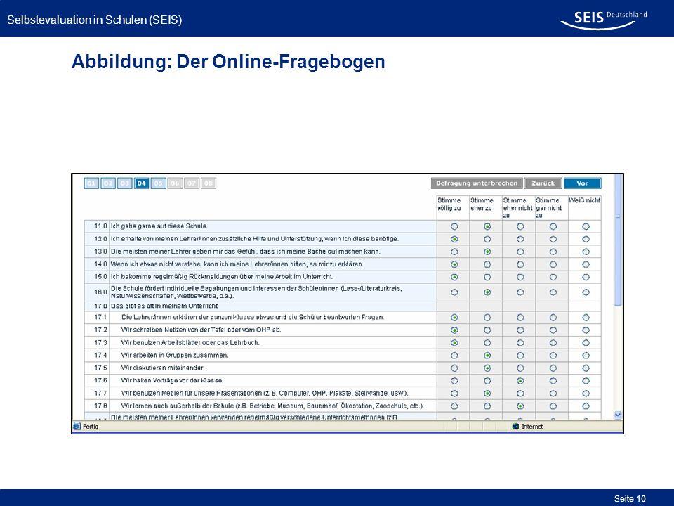 Abbildung: Der Online-Fragebogen