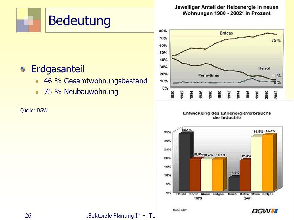 Bedeutung Erdgasanteil 46 % Gesamtwohnungsbestand 75 % Neubauwohnung
