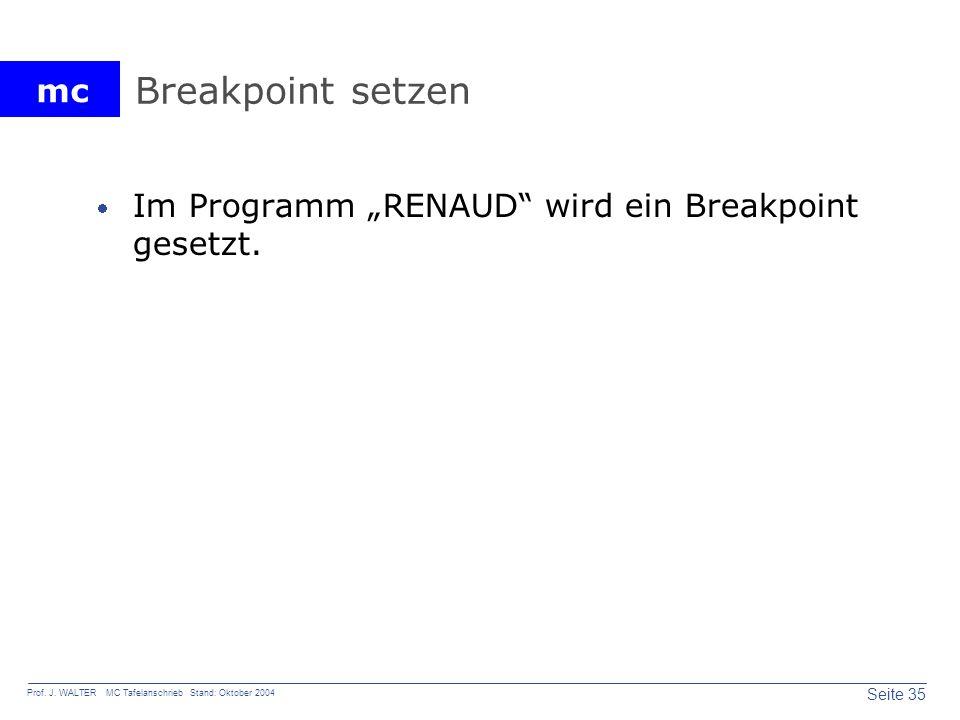 """Breakpoint setzen Im Programm """"RENAUD wird ein Breakpoint gesetzt."""