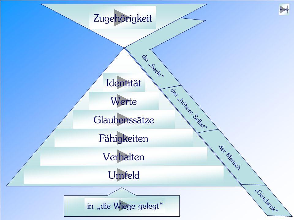 Zugehörigkeit Identität Werte Glaubenssätze Fähigkeiten Verhalten
