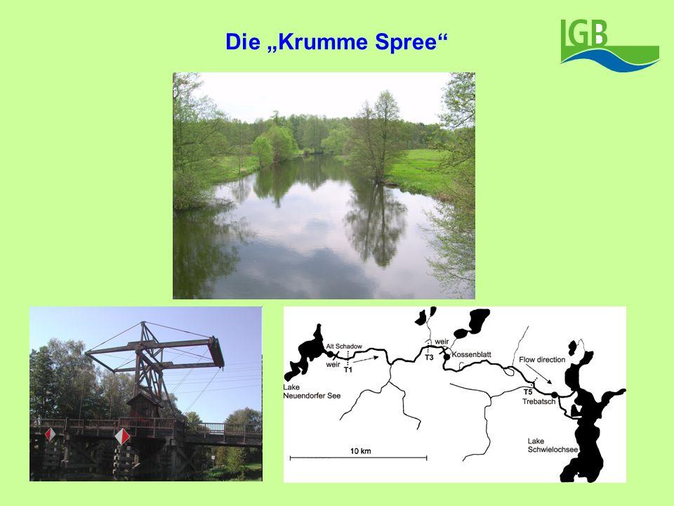 """Die """"Krumme Spree"""