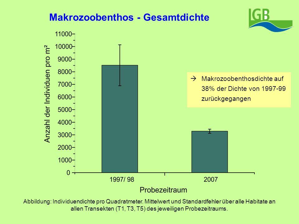 Makrozoobenthos - Gesamtdichte