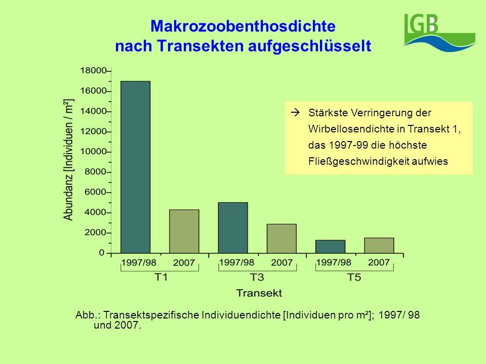 Makrozoobenthosdichte nach Transekten aufgeschlüsselt