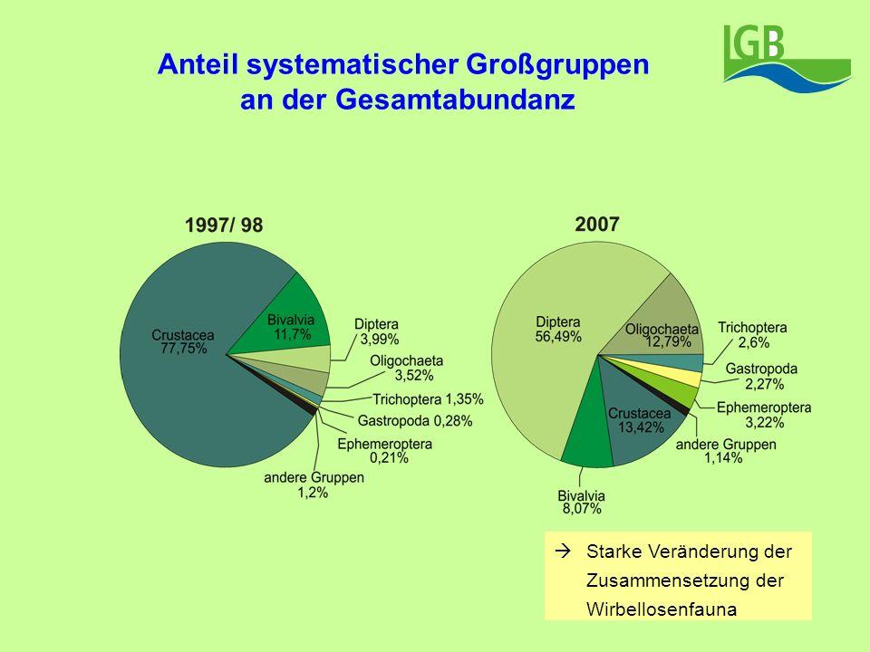 Anteil systematischer Großgruppen an der Gesamtabundanz