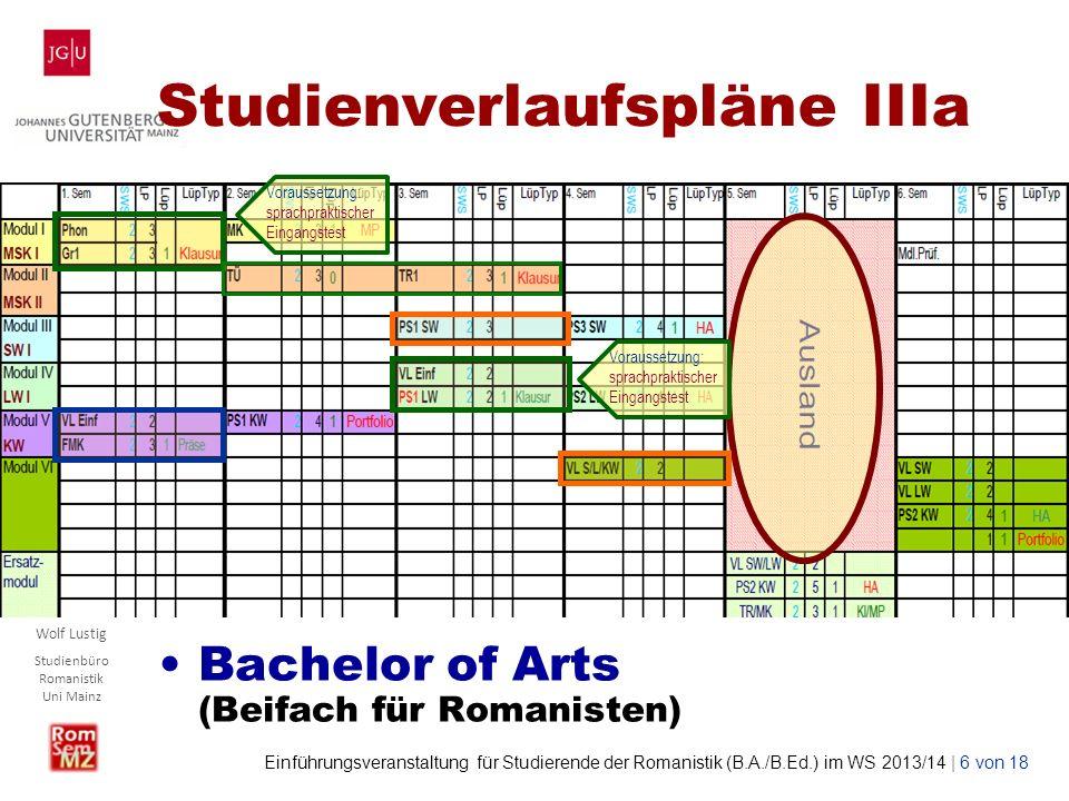 Studienverlaufspläne IIIa