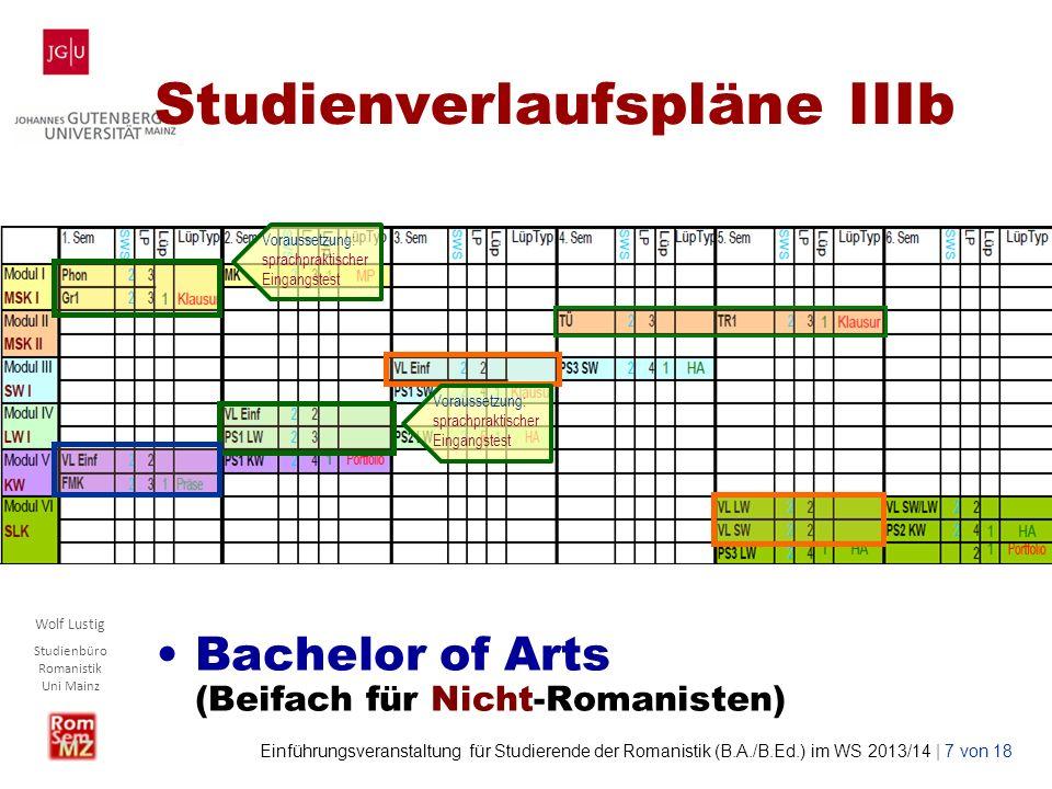 Studienverlaufspläne IIIb