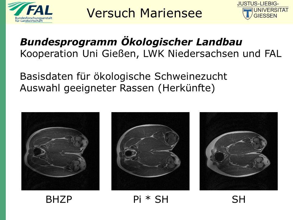 Versuch Mariensee Bundesprogramm Ökologischer Landbau