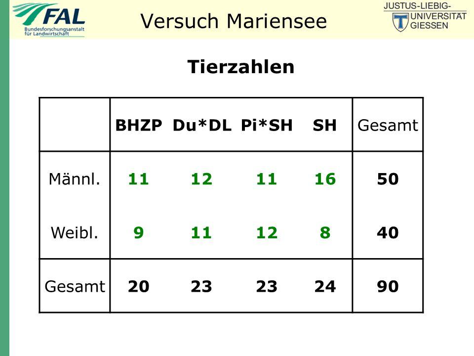 Versuch Mariensee Tierzahlen BHZP Du*DL Pi*SH SH Gesamt Männl. 11 12