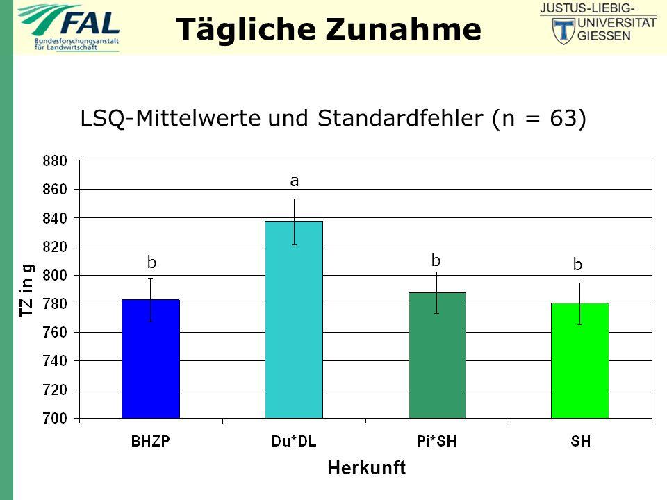 LSQ-Mittelwerte und Standardfehler (n = 63)