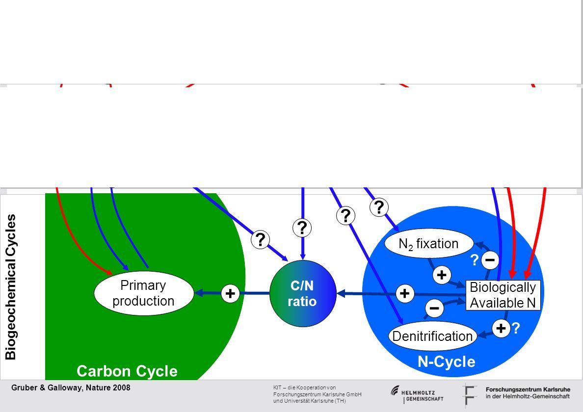 + − + + + + + − + + − + + − + N-Cycle Carbon Cycle