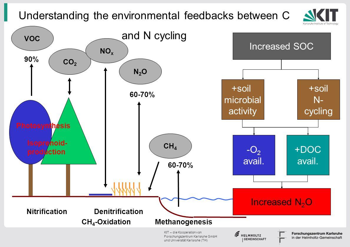 Understanding the environmental feedbacks between C and N cycling