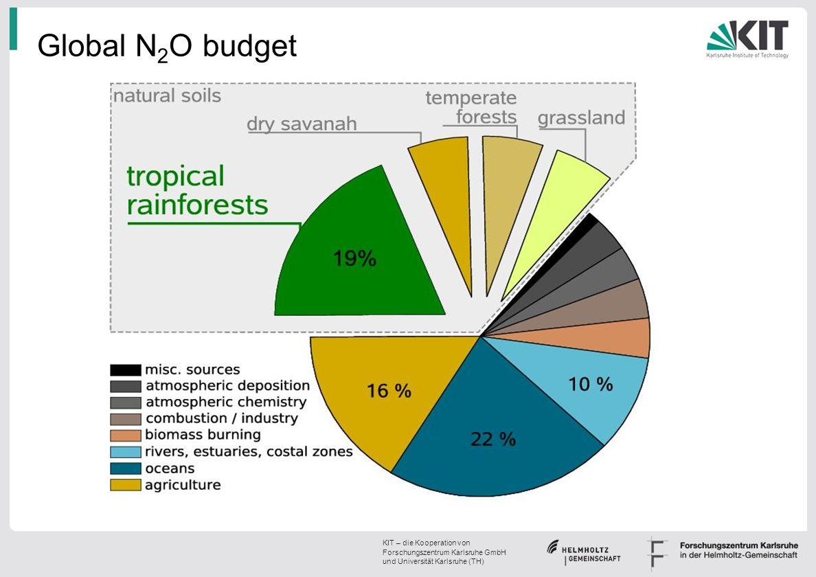 Global N2O budget
