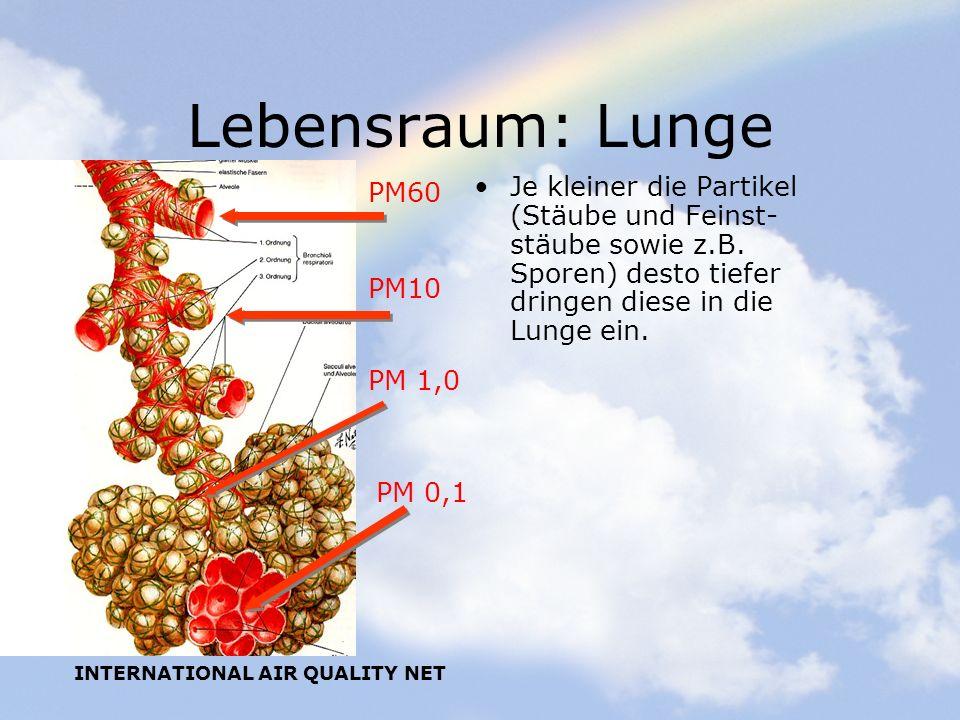 Lebensraum: Lunge PM60. Je kleiner die Partikel (Stäube und Feinst-stäube sowie z.B. Sporen) desto tiefer dringen diese in die Lunge ein.