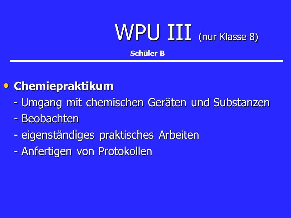 WPU III (nur Klasse 8) Chemiepraktikum