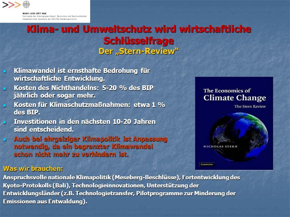 """Klima- und Umweltschutz wird wirtschaftliche Schlüsselfrage Der """"Stern-Review"""