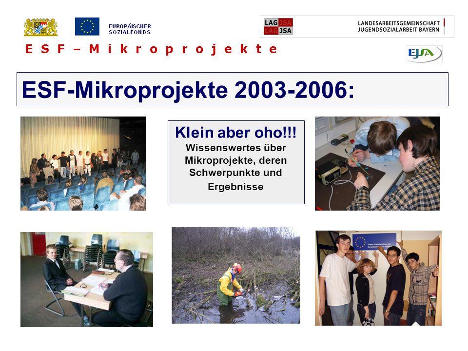 Wissenswertes über Mikroprojekte, deren Schwerpunkte und Ergebnisse