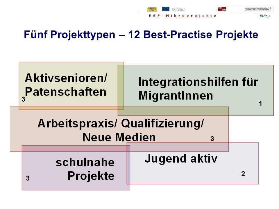 Fünf Projekttypen: Fünf Projekttypen – 12 Best-Practise Projekte 3 1 3