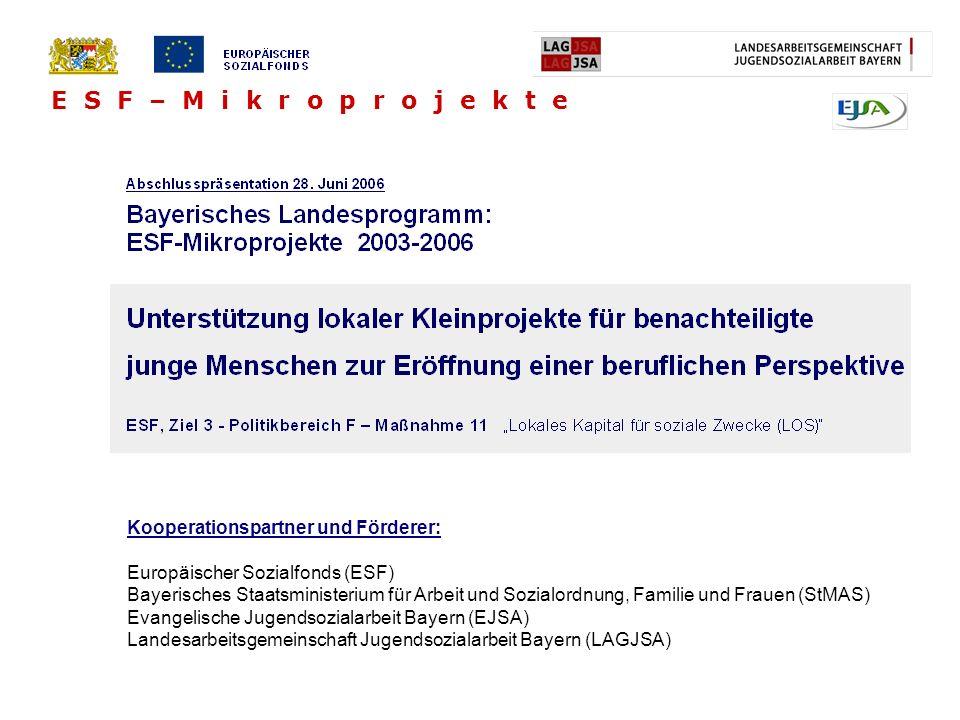 E S F – M i k r o p r o j e k t e Kooperationspartner und Förderer: