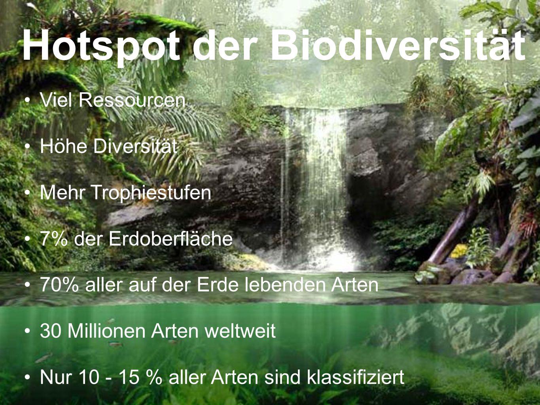 Hotspot der Biodiversität
