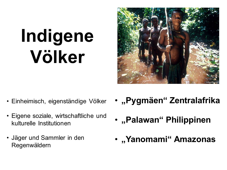 "Indigene Völker ""Pygmäen Zentralafrika ""Palawan Philippinen"
