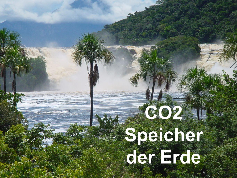 CO2 Speicher der Erde