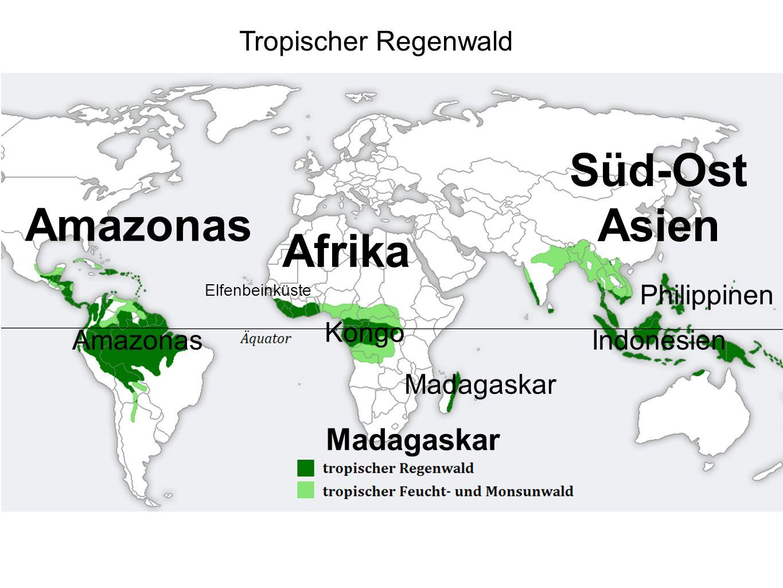 Süd-Ost Asien Amazonas Afrika