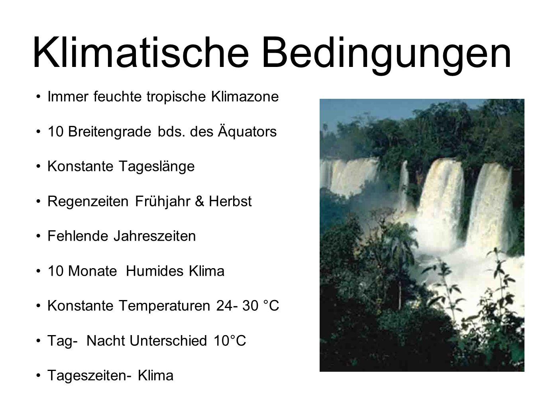 Klimatische Bedingungen
