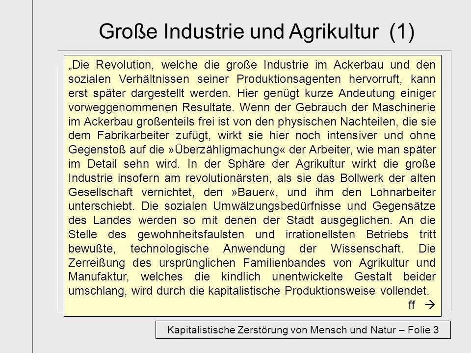 Große Industrie und Agrikultur (1)