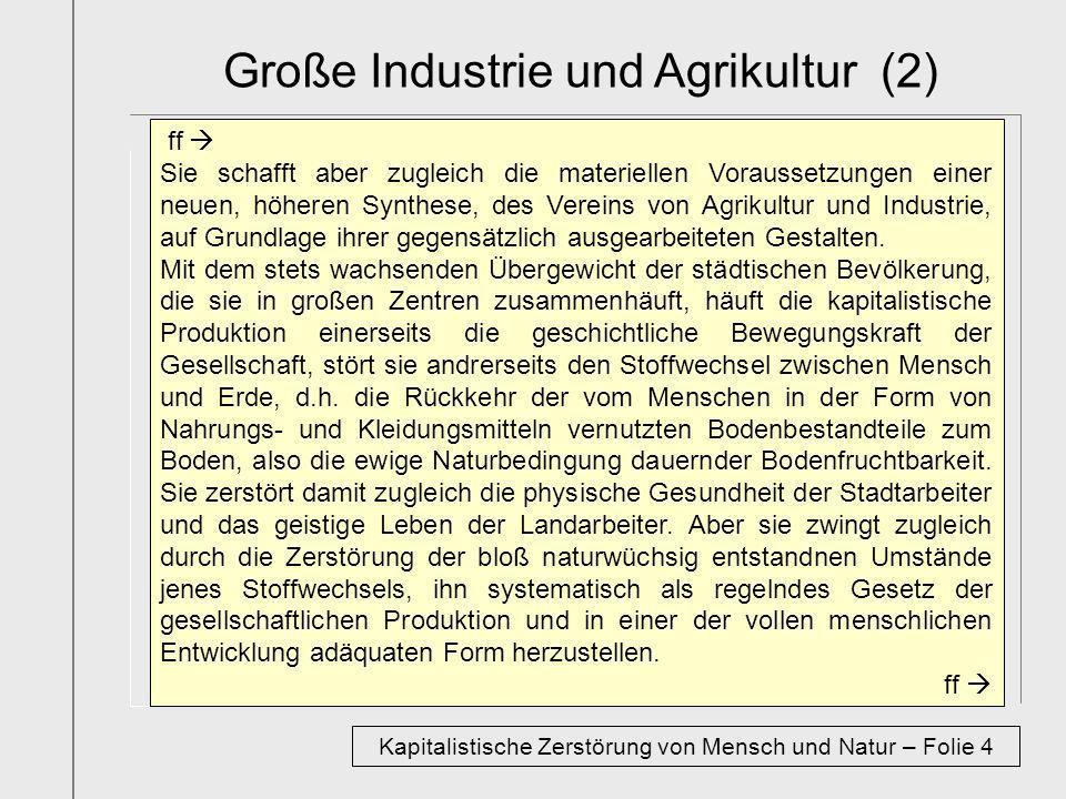 Große Industrie und Agrikultur (2)