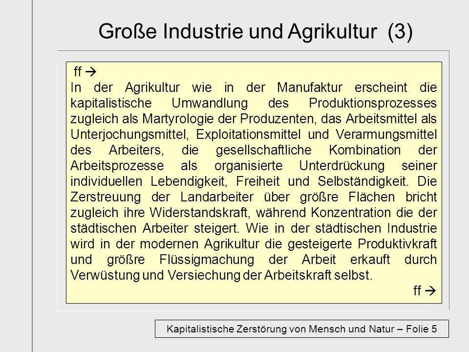 Große Industrie und Agrikultur (3)