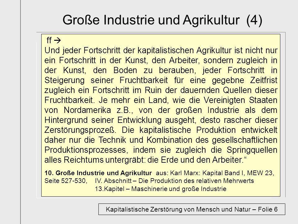 Große Industrie und Agrikultur (4)