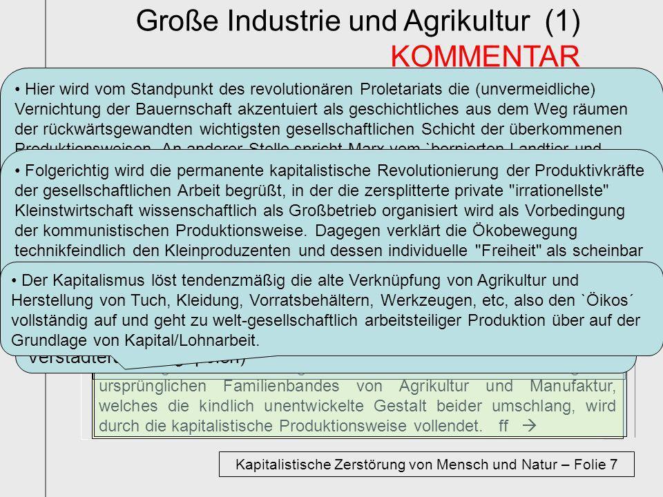 Kapitalistische Zerstörung von Mensch und Natur – Folie 7
