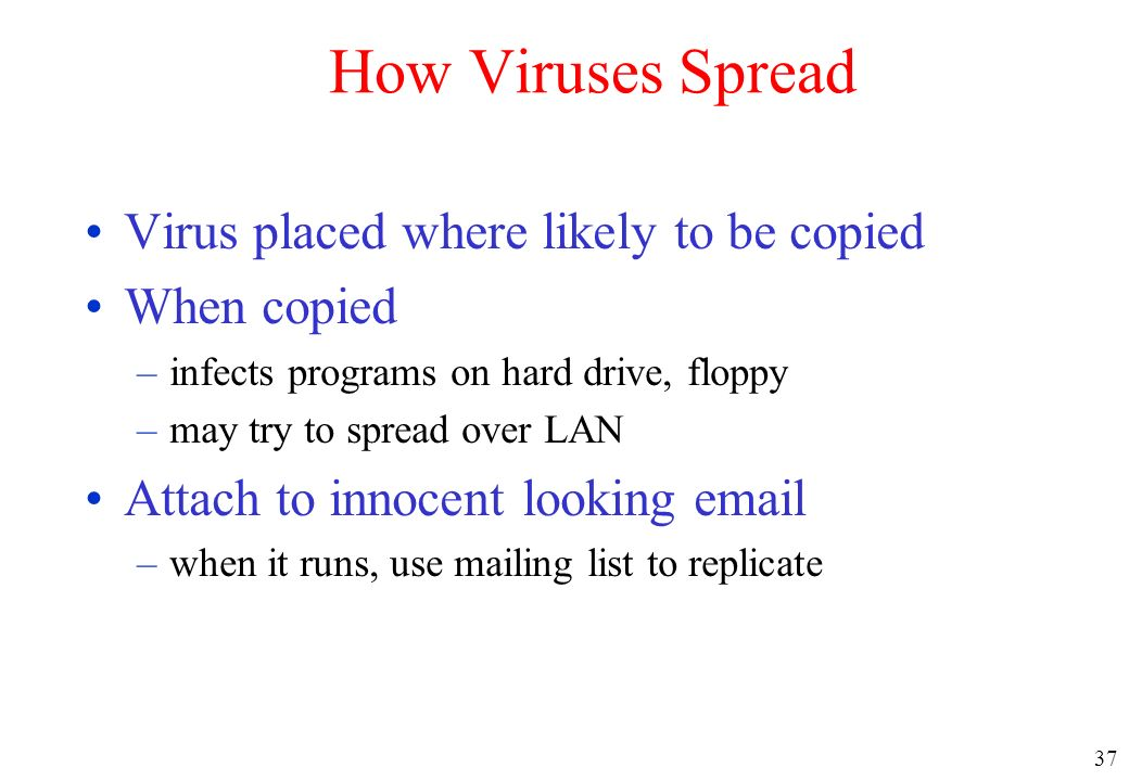 How Viruses Spread Virus placed where likely to be copied When copied