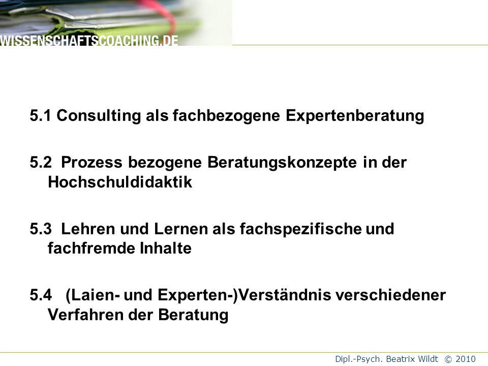 5.1 Consulting als fachbezogene Expertenberatung