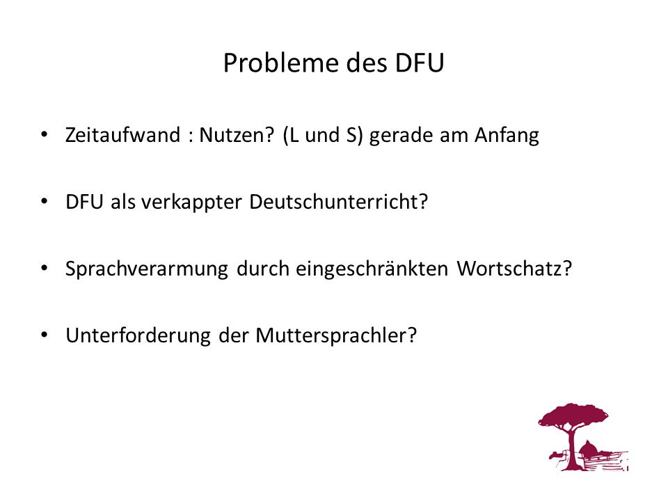 Probleme des DFU Zeitaufwand : Nutzen (L und S) gerade am Anfang