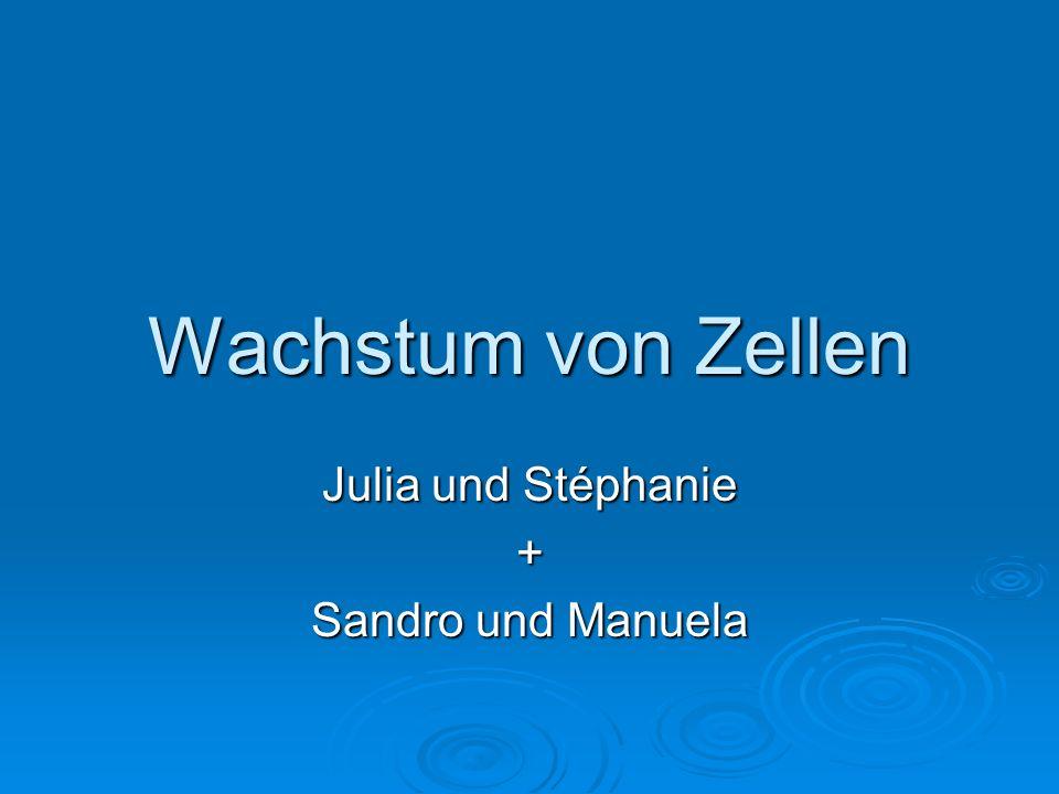 Julia und Stéphanie + Sandro und Manuela