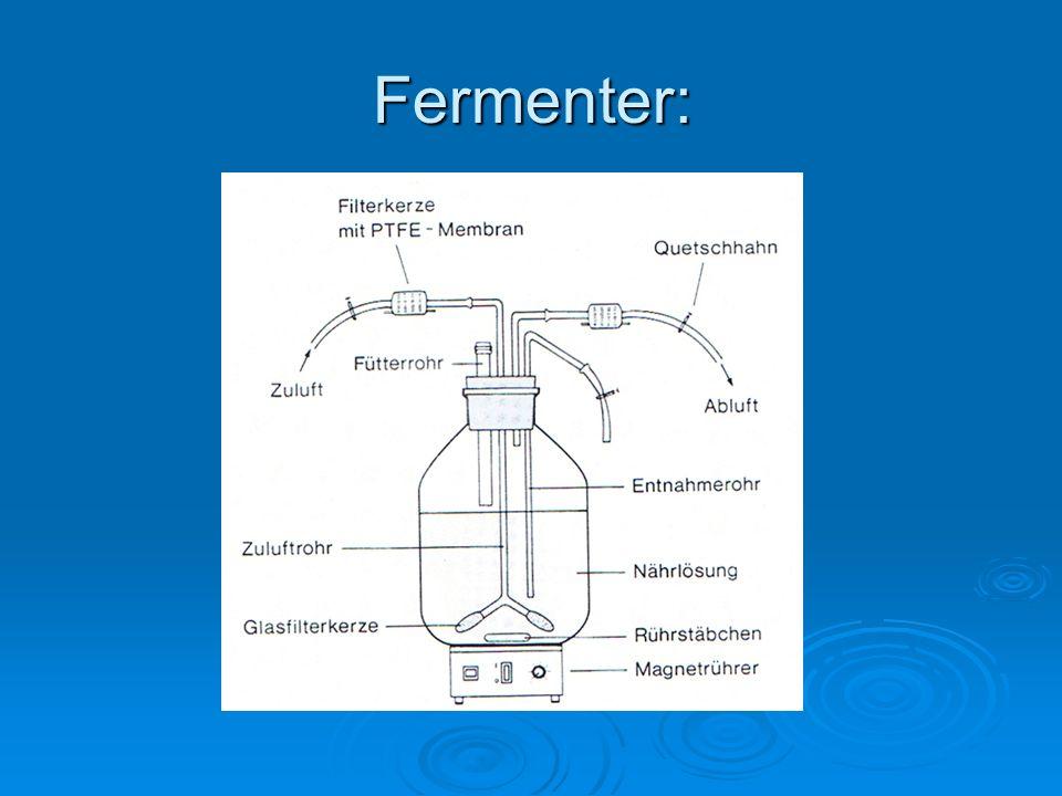 Fermenter:
