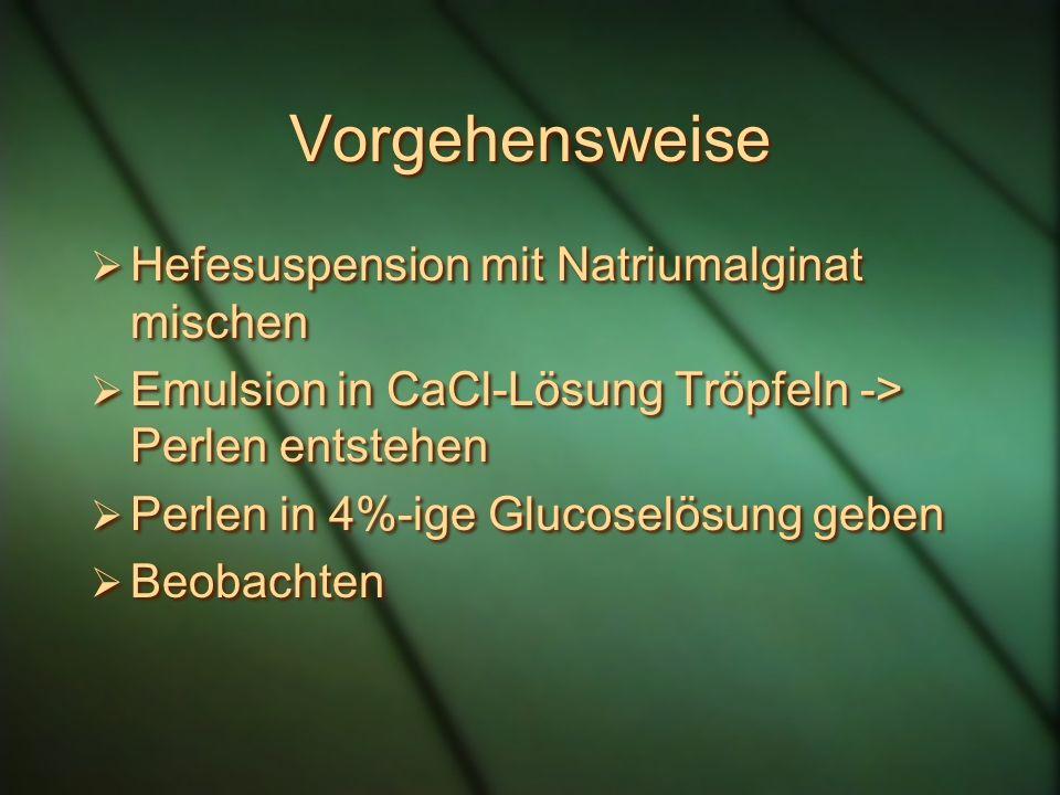 Vorgehensweise Hefesuspension mit Natriumalginat mischen
