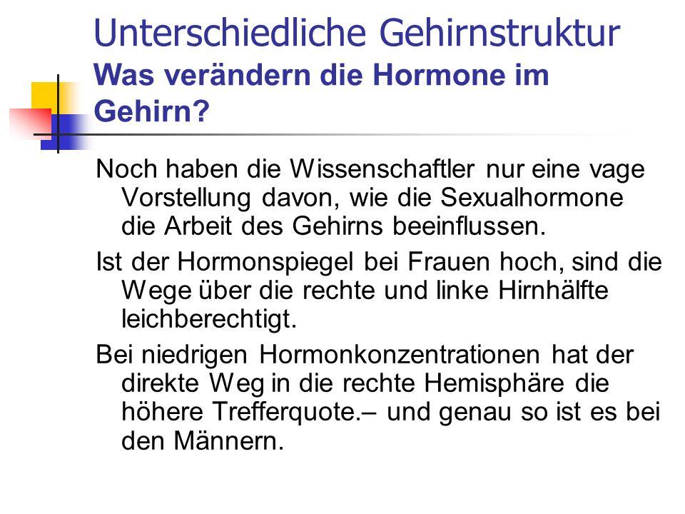 Unterschiedliche Gehirnstruktur Was verändern die Hormone im Gehirn