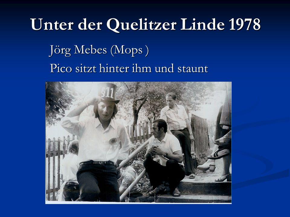 Unter der Quelitzer Linde 1978