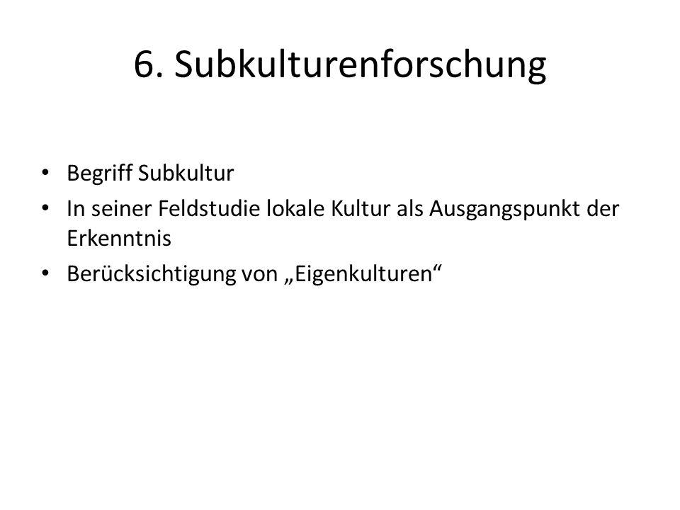 6. Subkulturenforschung