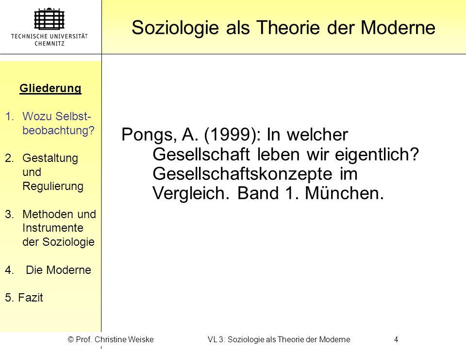 Soziologie als Theorie der Moderne