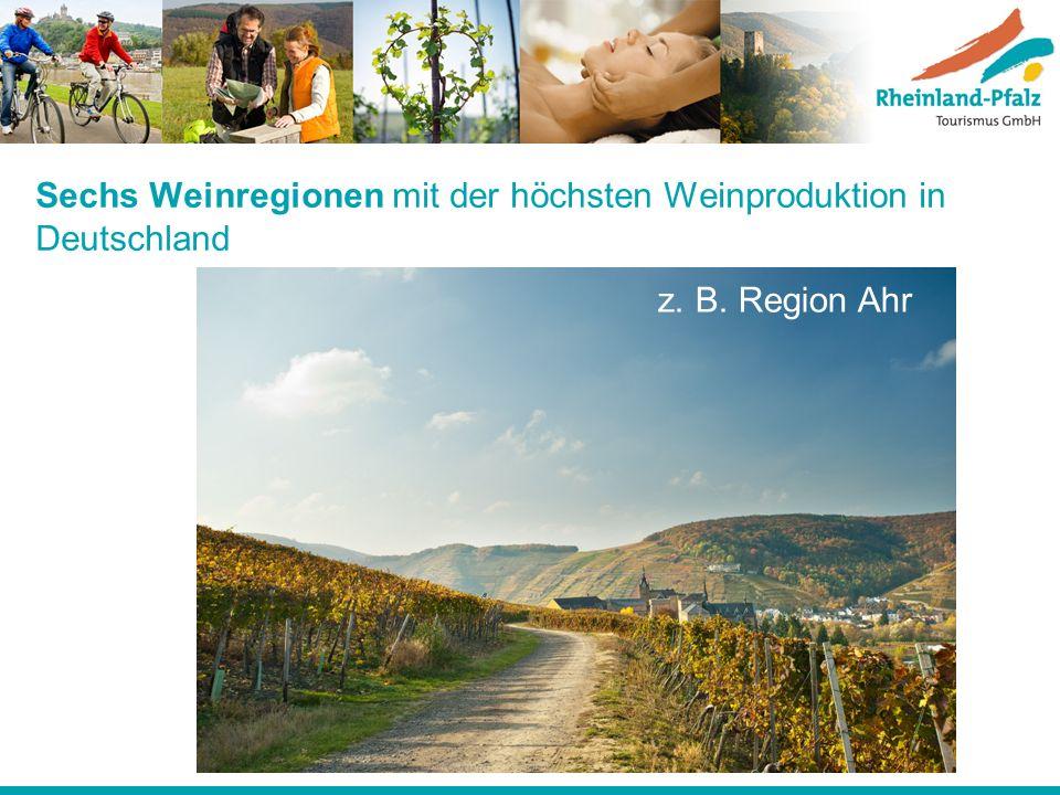 Sechs Weinregionen mit der höchsten Weinproduktion in Deutschland