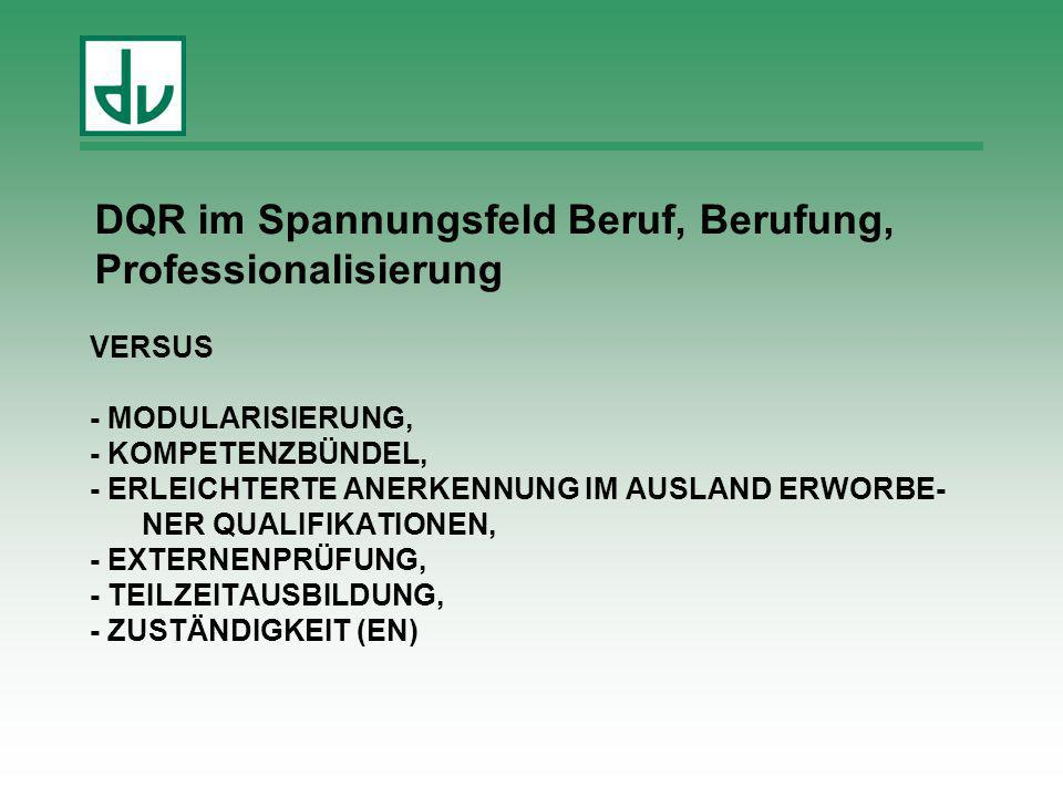 DQR im Spannungsfeld Beruf, Berufung, Professionalisierung