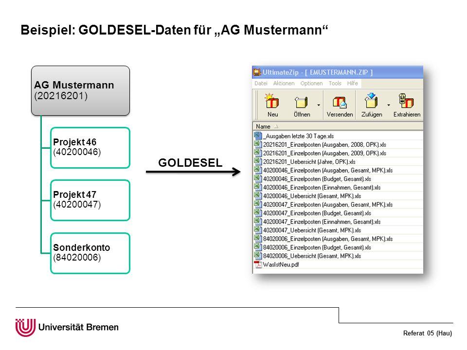"""Beispiel: GOLDESEL-Daten für """"AG Mustermann"""