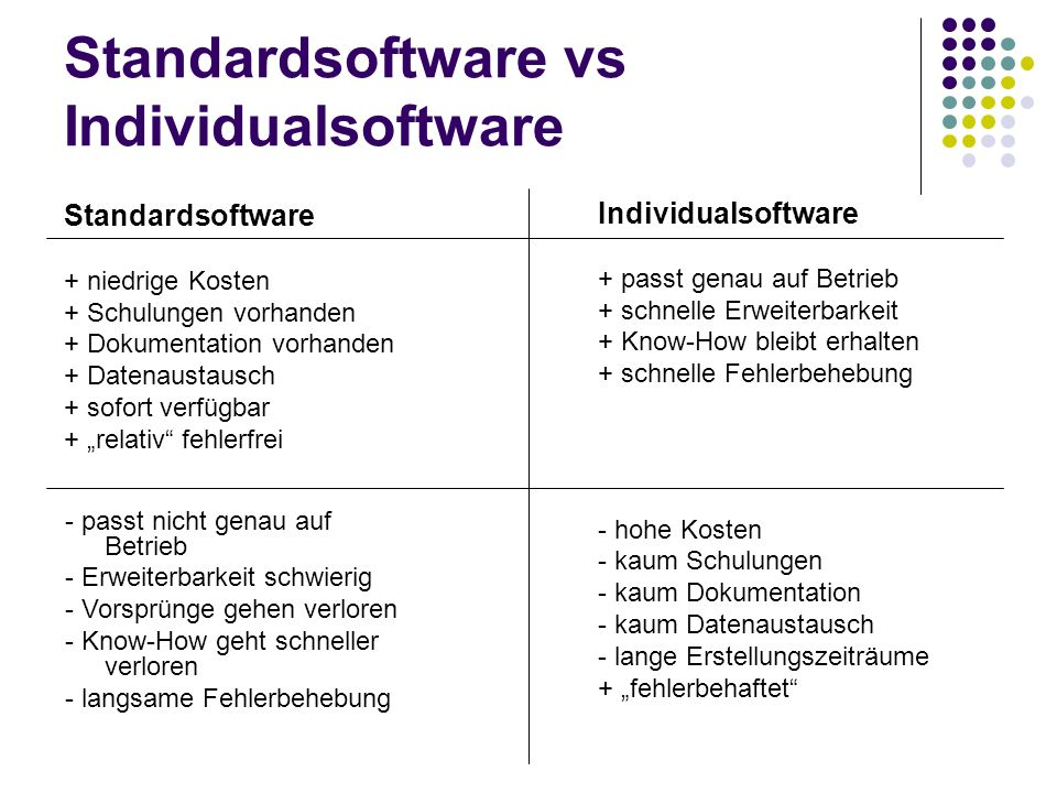 Standardsoftware vs Individualsoftware