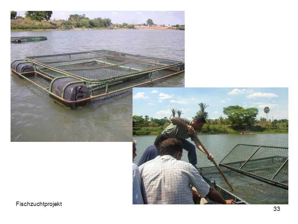 Fischzuchtprojekt